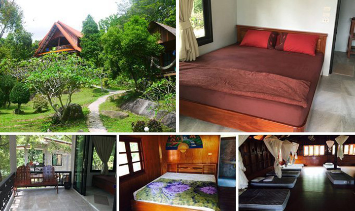 accommodation of the yoga retreat